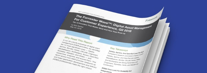 The Forrester Wave: Digital Asset Management for Customer Experience