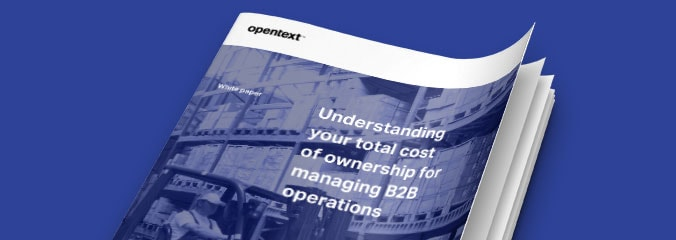 Whitepaper: Understanding your total costs of ownership for managing B2B operations image