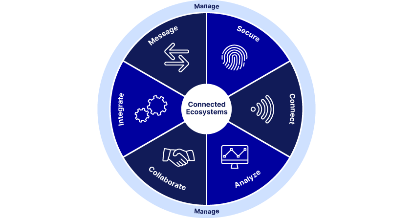 Wheel of Business Network solutions