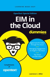 Enterprise Information Management (EIM) in der Cloud for Dummies